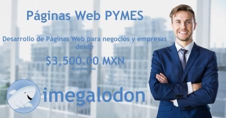 Desarrollo de Paginas Web en el Bajio y Zona Metropolitana